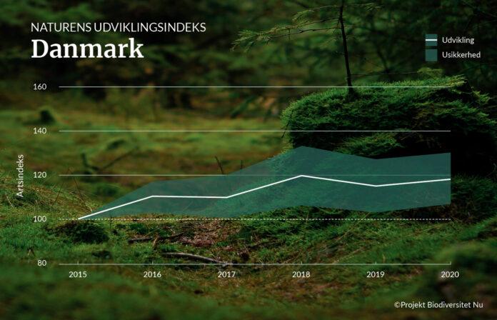 Forskningsprojekt viser overraskende fremgang for bynaturen. Kilde: Danmarks Naturfredningsforening.